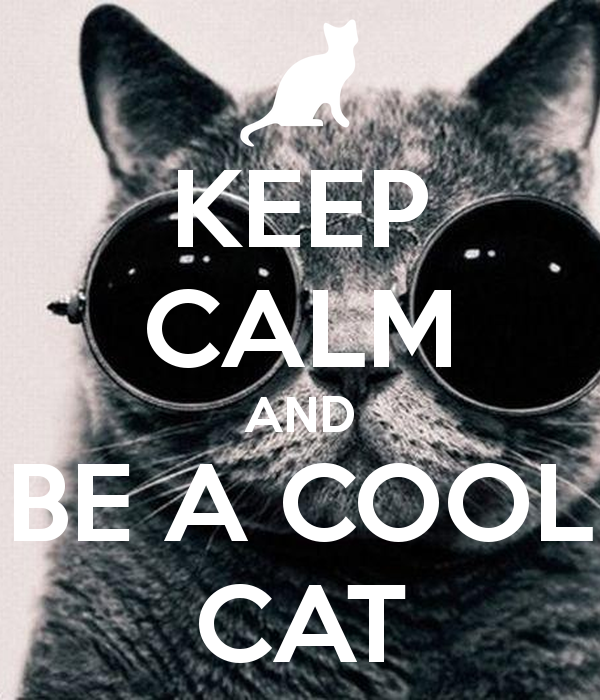 keep-calm-and-be-a-cool-cat-3